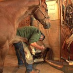 Jake The Farrier